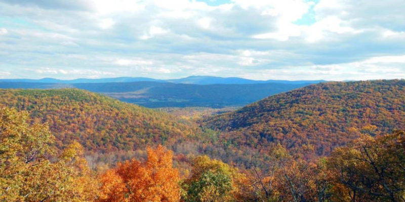 Shenandoah County's 5 Best Hikes for Fall Foliage