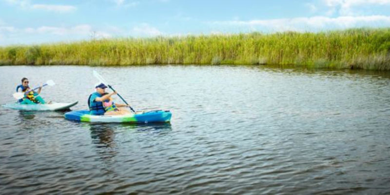 Local's Guide to the Great Outdoors in Va Beach