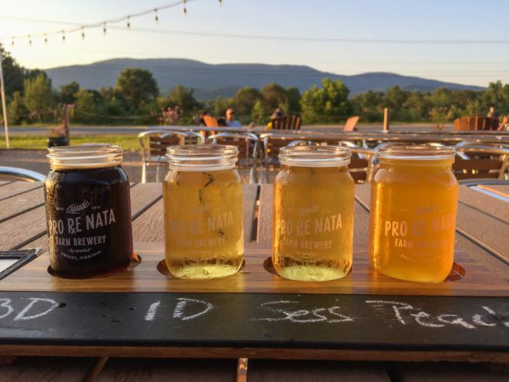 8 Delicious Craft Beers You Will Love From the Charlottesville Area
