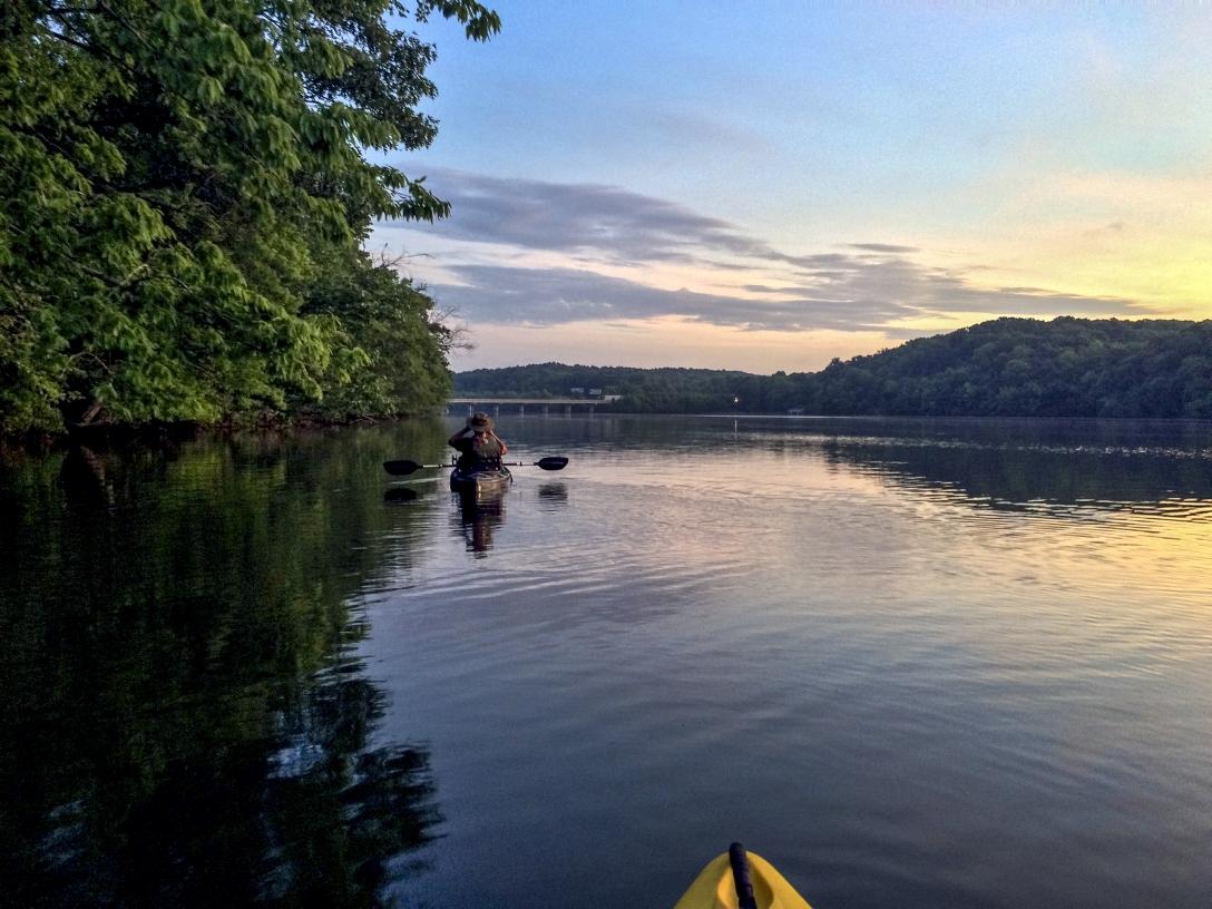 Lake Gaston Birding