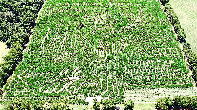 Liberty Mills Farm Corn Maze 2020