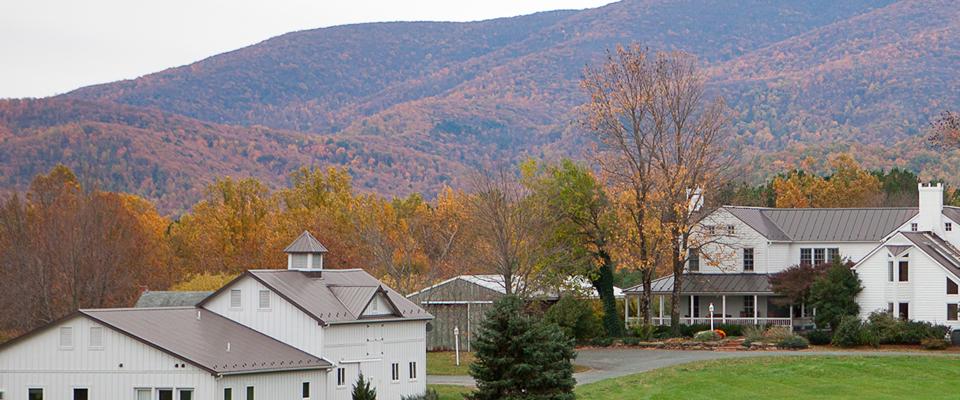 the retreat at veritas farmhouse wellness center