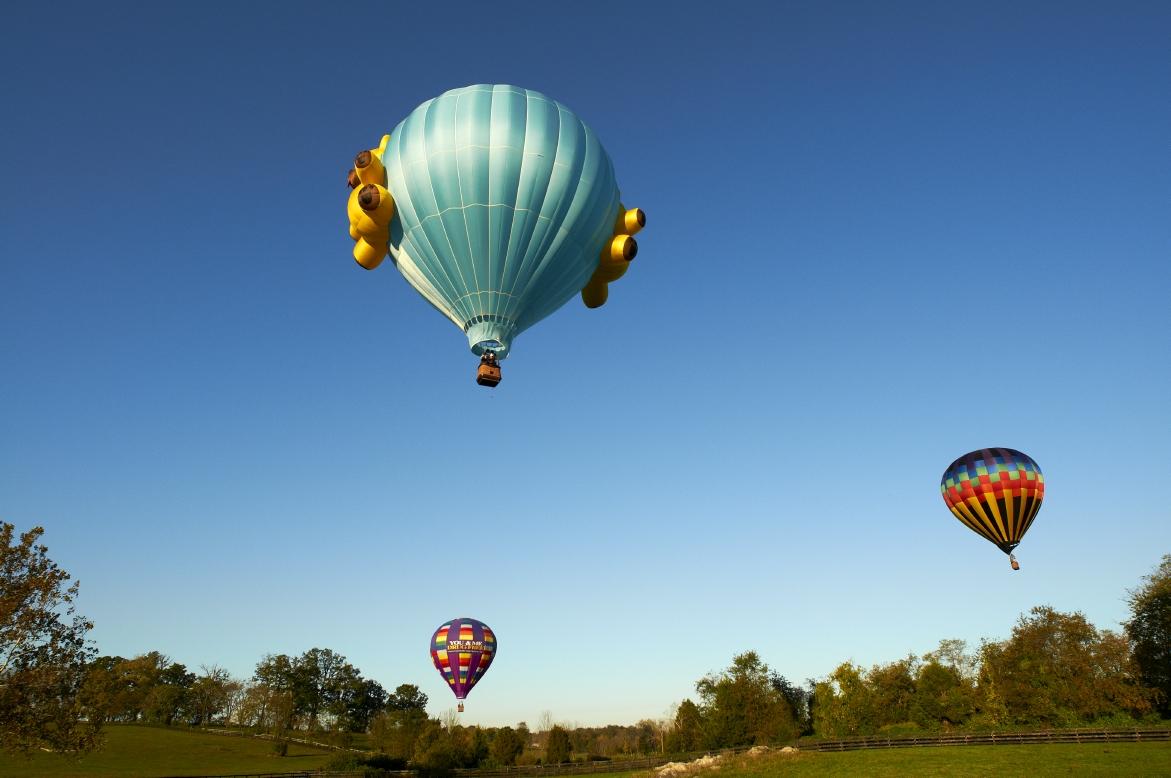 Shenandoah Valley Hot Air Balloon, Wine & Music Festival