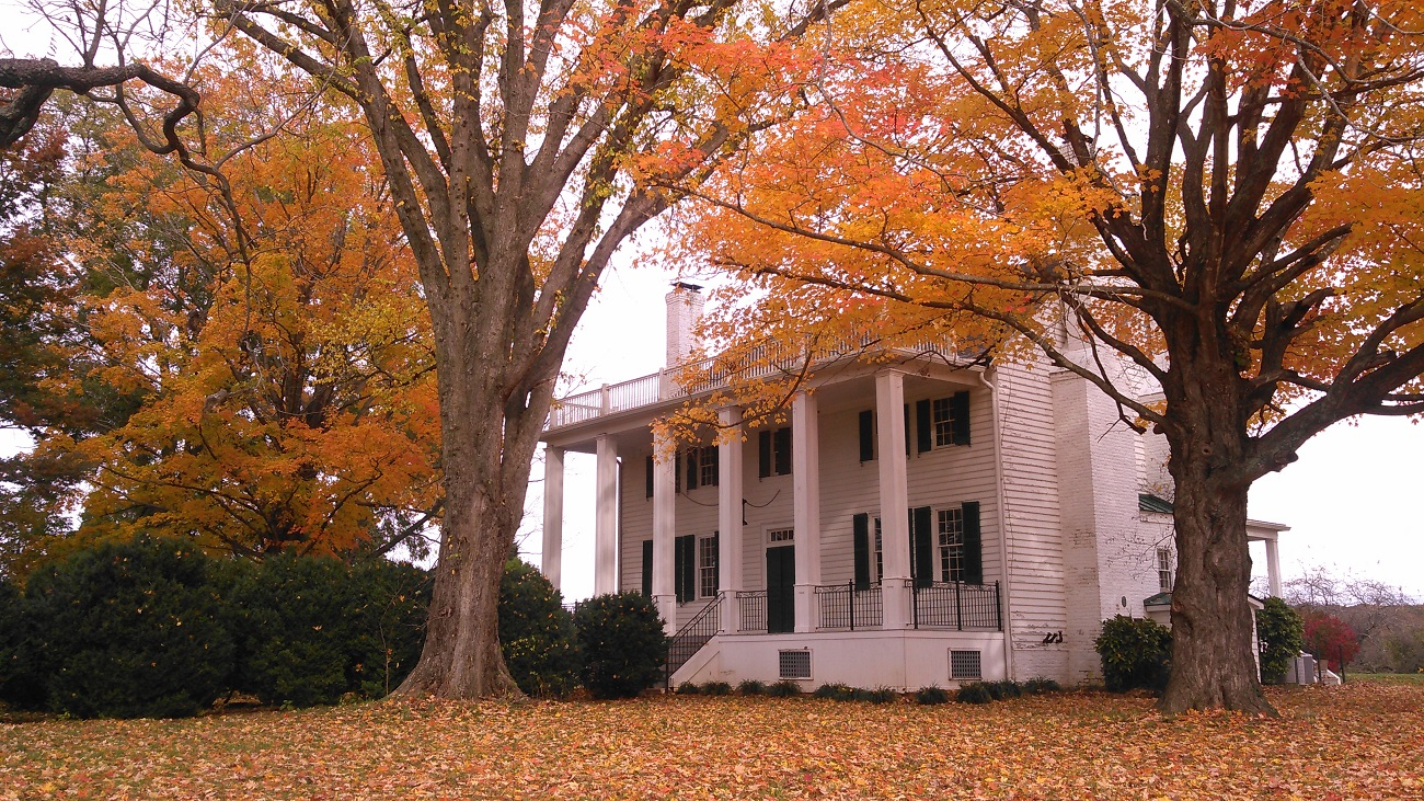 effingham manor fall