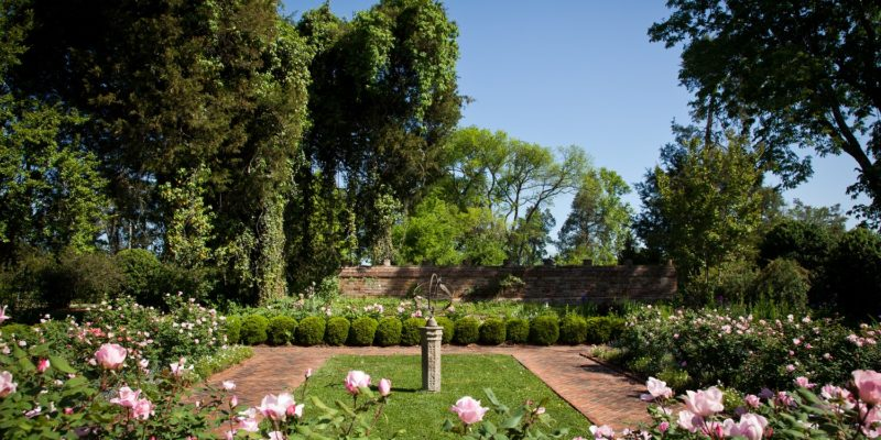 Tuckahoe Plantation: Garden Week