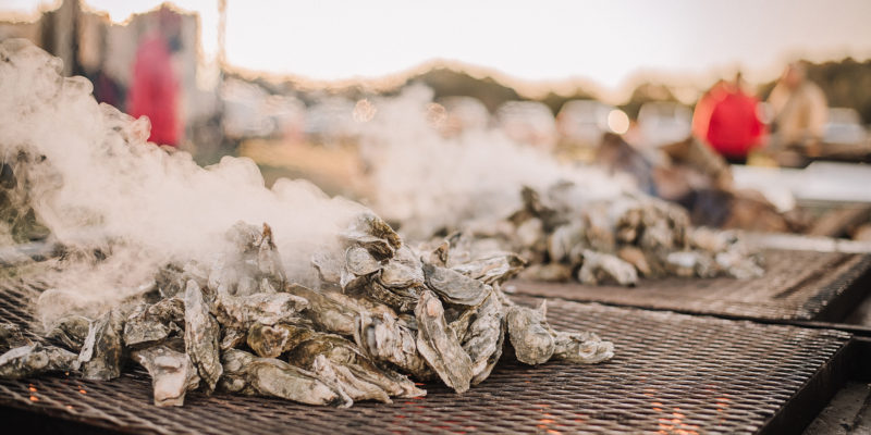 northern neck oysters